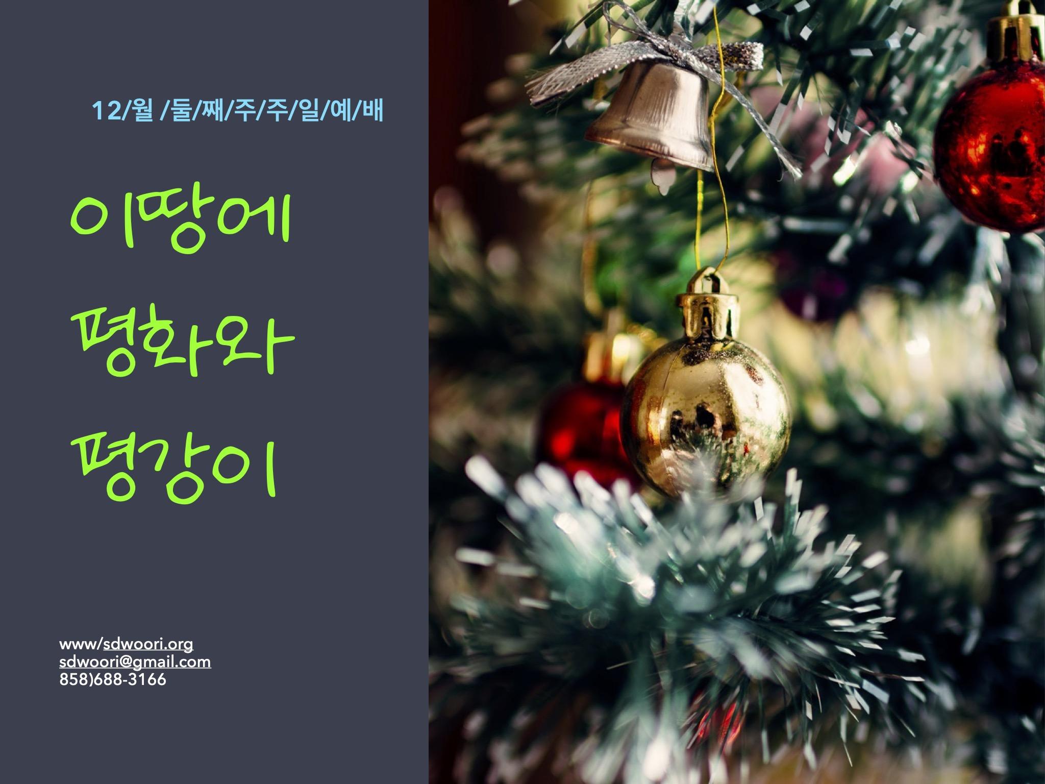 12월 둘째주 주일예배_1.jpg